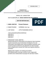 13.Analisis Jabatan Carminah, Amd.kep (Perawat Pelaksana Lanjutan)