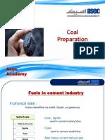 Coal Preparation