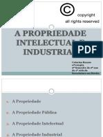 A Propriedade Intelectual e Industrial_00