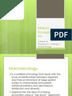 Macro Ecosystem Report