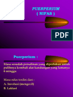 PUERPERIUM  NIFAS