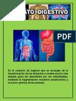 DIGESTIVO DIAPOSITIVA-3