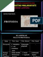 Materi Prak Par2 Protozoa