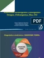 Dengue,Chikungunya,Zika y FUA