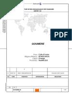 Site Survey Report 3G GOUMERE