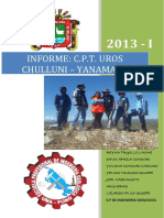 Informe de Campo Chulluni