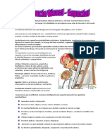 293_Inteligencia_Visual-Espacial.pdf