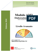 Dispensa AM3 2010 OpenOffice ITALIAN