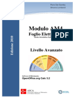 Dispensa AM4 2010 OpenOffice ITALIAN