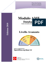 Dispensa AM5 2010 OpenOffice ITALIAN