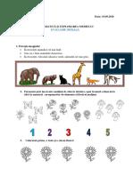 cp_evaluare_initiala_2.docx