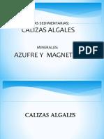 Calizas Algales y Magnetita