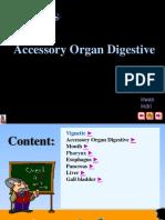 3 Accessory Organ Digestive