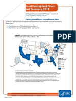 Typhi Annual Summary 2013 508c