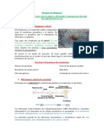 Resumen de Biología I T4