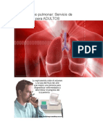 Funcionalismo pulmonar