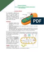 Resumen de Biología I T5