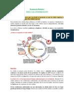 Resumen de Biología I T7 pdf