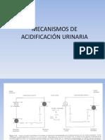 Acidificación Urinaria - Aquaorina - Prueba Funcion Renal