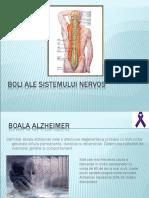Boli ale sistemului nervos.ppt