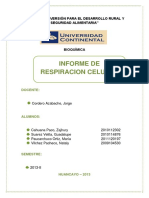 171797146-Informe-de-Respiracion-Celular.docx