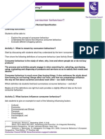 What_influences_shopping_Lesson_Plan.pdf