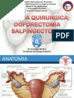 oforosalgingectomiajonathanmolina-140109163038-phpapp02