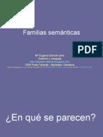 Familia Semantica Ejemplos