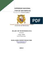 Neurofisiologia Chavez Chacaltana 2010 I Turno Noche