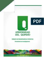 Formato Presentación_proyectos 2017