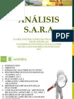 Análisis Sara 2017 1