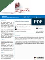 Programa Brechas ISO 9001