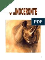 O Rinoceronte