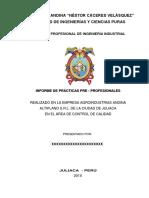 Esquema de Informe de Practicas Pre Profesionales 1 1