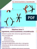 Tema 7 Ligamiento y recombinación2015_3_4D17_57.pdf