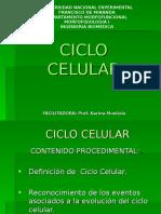 ciclocelular-100706220303-phpapp02 (1)