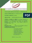 A. Informe Final Resp.social III 2015