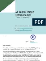 PGMI.pdf