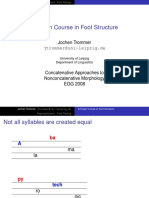A Course in Foot Structure
