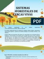 SISTEMAS AGROFORESTALES DE CERCAS VIVAS.pptx