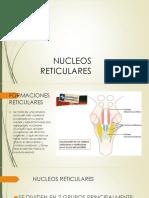 NUCLEOS RETICULARES