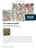 Poultry Farming Guide for Beginners _ Agrifarming