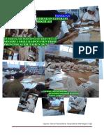 laporan literasi 2017