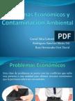 03 Problemas Economicos y Contaminacion Ambiental