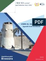 Cégalapítás Egyesült Arab Emírségek