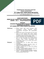 Sk Pemberlakuan Program PPI