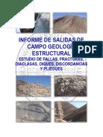 Informe_Salidas_de_Campo.docx