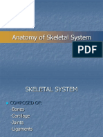 Anatomy of the Skeletal System 21