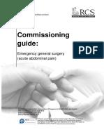 Commissioning guide  EGS Published v3.pdf