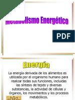 Metabolismo Energético 2014